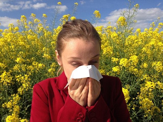 Pollen allergie