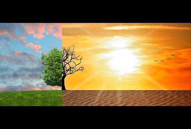 Eco-anxiété_climat